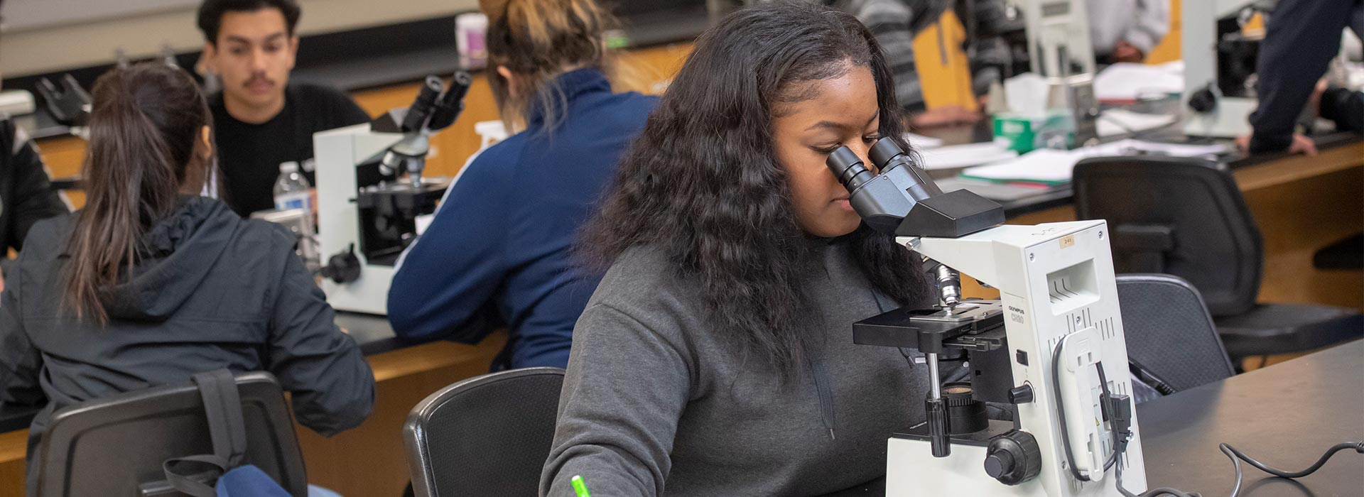 College of Natural Sciences: Meeting the needs of the community, the nation and beyond