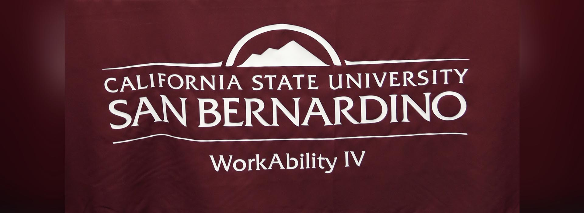 CSUSB's WorkAbility IV to host business and public administration panel discussion