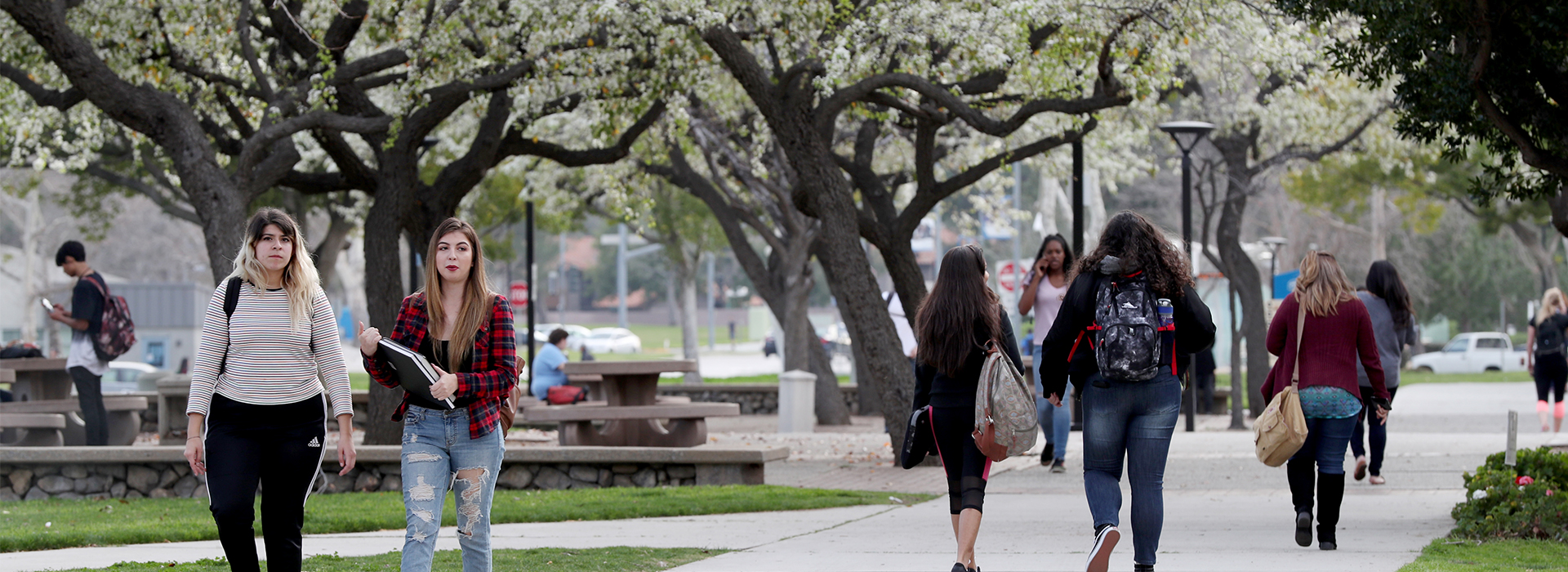 CSUSB listed in U.S. News & World Report's Best Online Programs Rankings